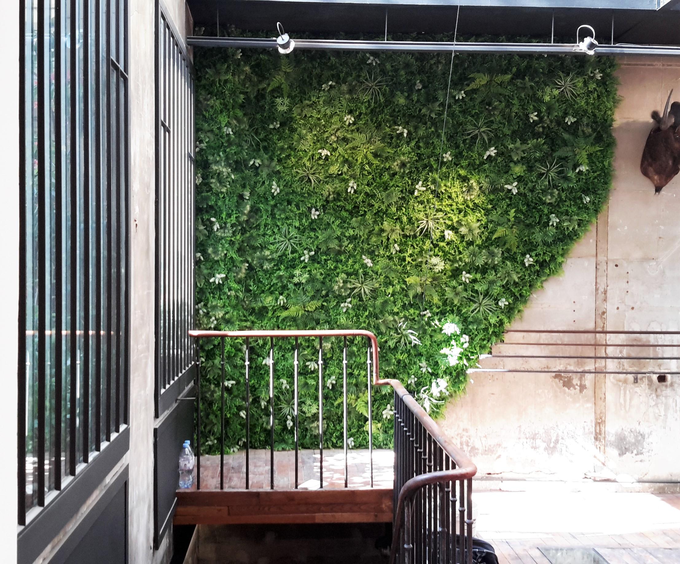 Mur végétal et murs végétaux artificiels - Histoire d\'eau