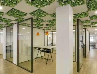 Dalles végétales pour plafond