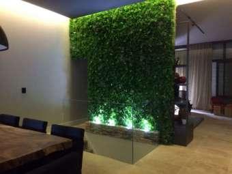 Mur végétal avec bac en bois flotté