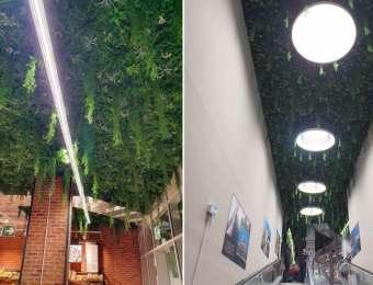 Plafond végétal