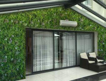 Habillage végétal & mur zen